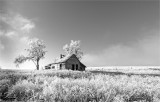 Black  White Old Homestead  Lincoln County