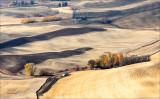 View from Steptoe Butte, WA