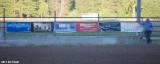 Z99A5774a.jpg