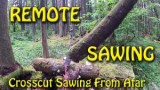 Remote Crosscut Saw Sawing