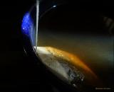 cosmos seen in a teacup.jpg