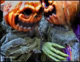 pumpkin wisperes.jpg