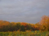 Dusk in October.jpg