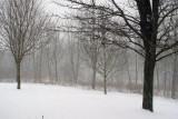 February 2007 Snow
