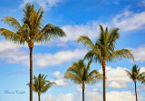 IT'S A BEAUTIFUL DAY IN PARADISE -0022.jpg