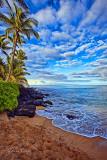 HONOKOWAI-BEACH MAUI-0058.jpg