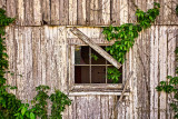 BARN-WINDOW-2216.jpg