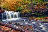 WYANDOT_WATERFALL_RICKETTS_GLEN_0760.jpg