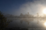 One Hundred Views of a Lake