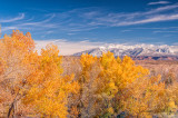 Fall Color in Arches National Park