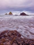 Oceanside Sunrise II
