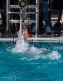 2018203-Sahuarita Swim Meet-0216.jpg