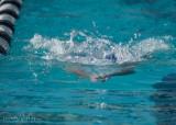 2018203-Sahuarita Swim Meet-0244.jpg