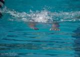 2018203-Sahuarita Swim Meet-0246.jpg