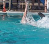 2018203-Sahuarita Swim Meet-0527.jpg