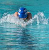2018203-Sahuarita Swim Meet-0538.jpg