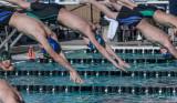 2018203-Sahuarita Swim Meet-0655.jpg