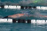 2018203-Sahuarita Swim Meet-0071.jpg