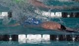 2018203-Sahuarita Swim Meet-0083.jpg