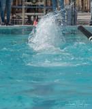 2018203-Sahuarita Swim Meet-0876.jpg