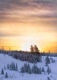 Winter Sunrise Above Bunsen Peak