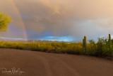 Monsoon Rainbow 2