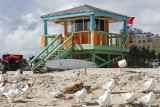 Went out to photograph lifeguard stations on the Beach (this one = 14th St.)