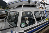 At noon we went to see some nature with Captain Gary's Adventures (great)!  This is Gary's boat Blue Dawg and mate Niko).