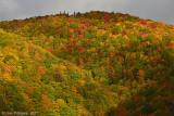 Fall-Colors---Nova-Scotia---610_0196.jpg