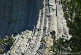 Climber on Devils Tower