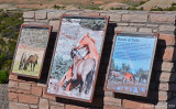 Pryor Mountain Horse Range
