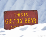 Announcing Grizzly Bears