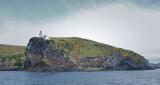 Taiaroa Lighthouse