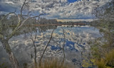 Serpentine River Reflections