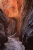 0056-IMG_0036-Buckskin Gulch Trail.jpg