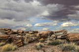 painted_desert__petrified_forest_national_park