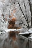 oak_creek_canyonwest_fork_in_winter