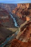 Grand Canyon-recent