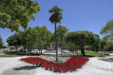 Jardim Municipal José de Lemos