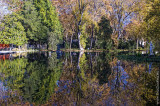 O Parque D. Carlos em 14 de novembro de 2008