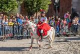 Paardenmarkt Vianen 2018 • Ringsteken