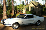 2016 - 1968 Mustang GT 350 Shelby owned by Charles Caruso of Miami Lakes