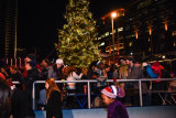 20171201_Canalside_Tree_Lighting_web-123062.jpg