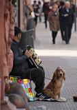 Tiggare med dragspel, hund med hatt