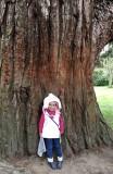Maïka et le séquoia du parc de La Perrine à Laval