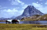 L'Ossau versant NW vu du lac d'Ayous supérieur