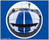 Mustang 2000s DD 10-21-16 WA.jpg
