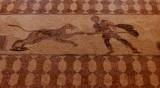 11-Paphos mosaics--011.JPG