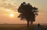 Ochtendzon / Morning Sun (Ouddorp)
