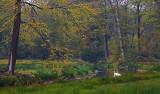 Landgoed Twickel (Delden)